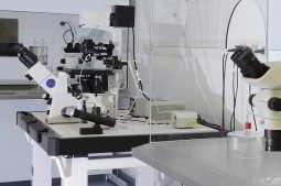 laboratório IVI Salvador