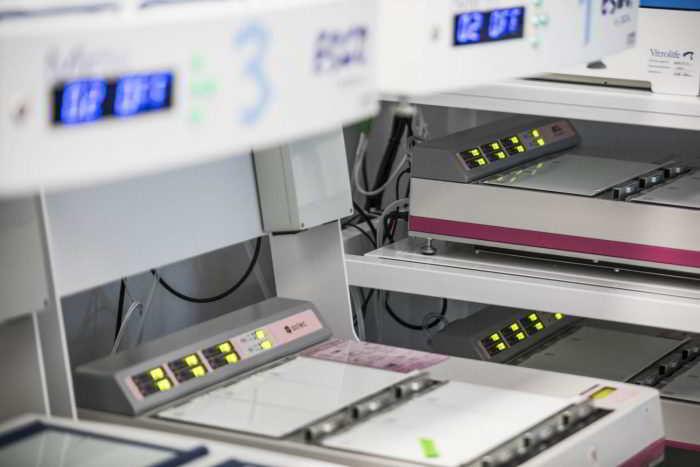 Cultivo embrionário no laboratório